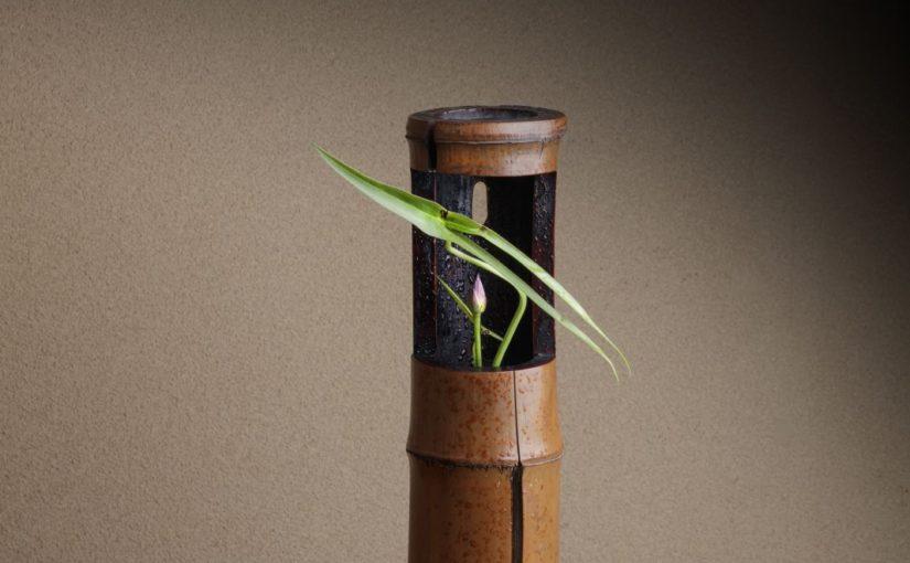 【季節の特別講座】横川志歩 なげいれ 花の教室@宇都宮