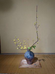 季節の特別講座 横川志歩 なげいれ 花の教室@宇都宮